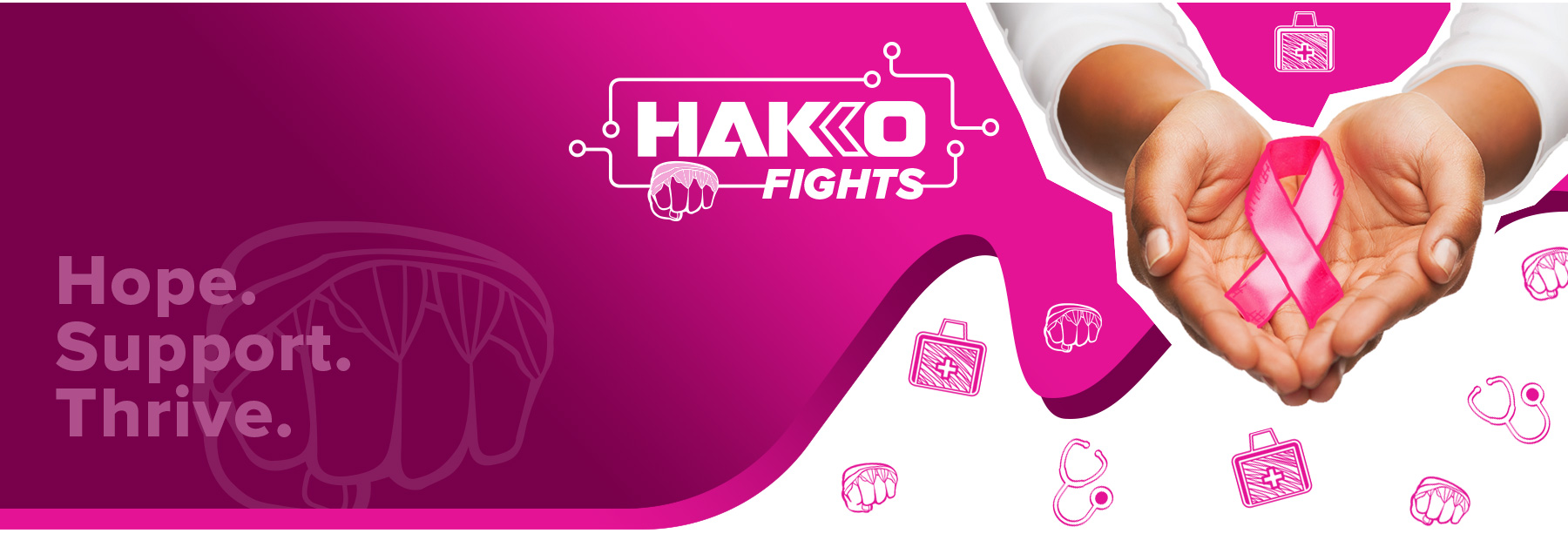 HAKKO-FIGHTS_Landing-PG2_03